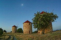 Windmills in Melia, a village near Feres, Evros, Greece