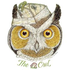Mouse Animals The Owl