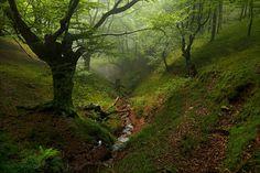 12 paisajes naturales para meditar - Amazing natural landscapes | BANCO DE IMAGENES (shared via SlingPic)
