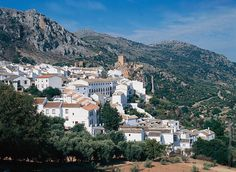 ANDALUCIA Andalucia is the most populous and the largest region of Spain. Its eight provinces: Huelva, Cadiz, Malaga, Sevilla, Granada, Cordoba, Jaén and Almeria,...