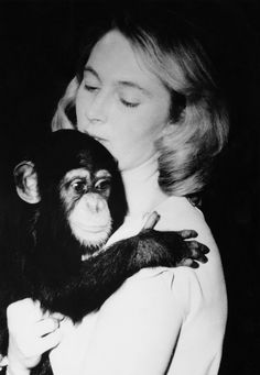 Jane Goodall arrives at the Gombe National Park in Tanzania to begin studying chimpanzees in the wild on July 14, 1960.