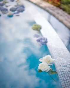 Flowers floating in the pool added a soft touch to this cocktail hour in the Cayman Islands