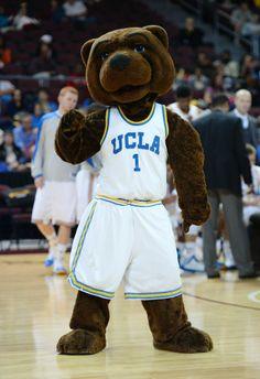 Mascot Monday: The UCLA Bruins   Surviving College