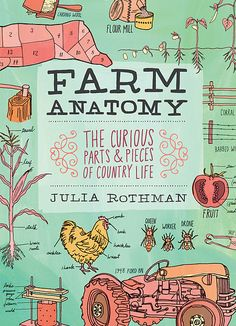 Finished this last night, I learned a lot! xc {Farm anatomy}