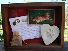 Sweet memory shadow box DIY for pet