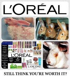 This is why I am against Animal Testing!   L'oreal, The Body Shop, Lancome are just a few brands that WON'T give-up testing their products on Animals!