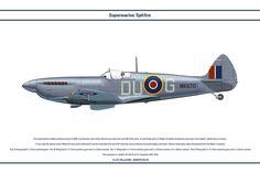 Spitfire Mk IX GB 312 Sqn by WS-Clave on DeviantArt