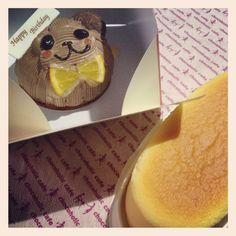 [BDC*2012/09/18]    相方の誕生日꒰⌯ɞ̴̶̷੭͜ɞ̴̶̷⌯꒱◞*♬    chocoholic cafe のくまちゃんショコラ かわうぃーねぇーʕ•̫͡•ʔ❣     あとチーズスフレも☆