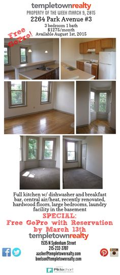 Templetown Realty Property Of The Week  2264 Park Ave 3 1275 Mo Available August 1st 2015 Free Gopro W Reservation