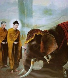 One is not called noble who harms living beings. By not harming living beings one is called noble. ~ The Buddha ~