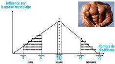 influence du nombre de répétitions pour grossir et prendre de la masse musculaire