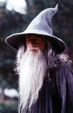 Ian McKellen - Gandalf (the Grey)