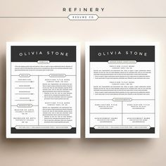 Ios  Style Indesign Resume Template  Design Templates