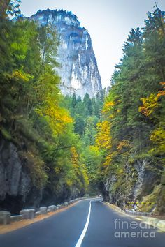 Bicaz Canyon Photograph by Claudia M Photography