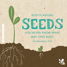 New Ecards to Share God's Love. DaySpring offers free Ecards featuring meaningful messages and inspiring Scriptures! Bible Verses Quotes, Bible Scriptures, Faith Quotes, Words Quotes, Prayer Quotes, Affirmation Quotes, Planting Seeds Quotes, Seed Quotes, Ecclesiastes 11