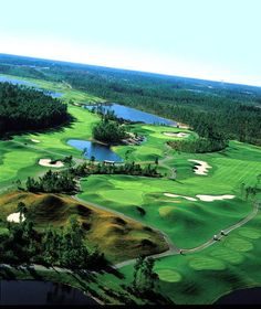 Wild Wing Avocet - Myrtle Beach Golf Courses www.GolfSportMag.com