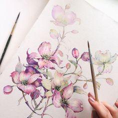 Watercolor dogwoods by Katerina Pytina ...