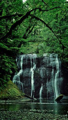 Falls Creek Falls « Olympic Peninsula Waterfall Trail