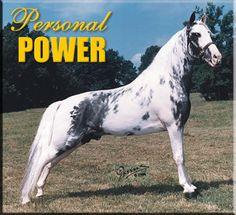 Personal Power - Spo
