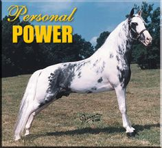 Personal Power - Spo