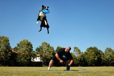 """Steve Teer and his frisbee dog Whiskey  """"i believe I can fly!"""""""