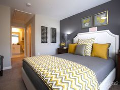 Yellow and grey bedroom idea.  Chevron throw.  I love this dark grey accent wall. <3