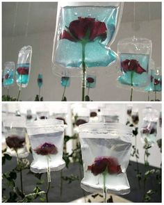 TO LIVE ON by #MinJeongSeo (2005, Infusion Bags, Roses)