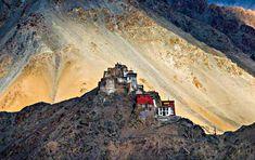 Namgyal Tsemo Monastery things to do in leh ladakh