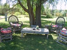 . B & B, Outdoor Furniture, Outdoor Decor, New Mexico, Salt, Peace, Garden, Home Decor, Garten