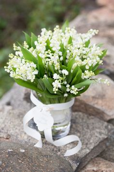love this type of small dainty white flowers for a bride bouquet (but maybe not these crazy expensive flowers that have to be flown in from friggin Holland) Spring Flowers, White Flowers, Beautiful Flowers, Fresh Flowers, Floral Bouquets, Wedding Bouquets, Wedding Flowers, Lily Of The Valley Bridal Bouquet, Flower Centerpieces