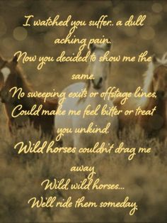 Wild Horses, the Rolling Stones <3. My favorite Stones song!