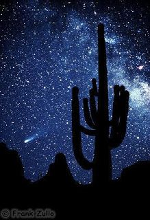 """Just Continue That Thought...: """"You are heaven's Halley's comet"""
