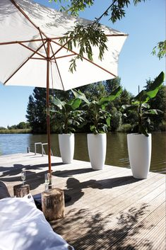 Outdoor living. Love the tall vases I would put gold from the bottom half way up!
