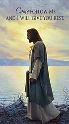 Jesus Christ is the Son of God according to the Christian religion. According to the bible, Jesus died on the cross for the sins of mankind so that we could experience the eternal grace of God. Images Du Christ, Pictures Of Christ, Church Pictures, Jesus Christus, Lds Art, Son Of God, God Jesus, Jesus Art, Christian Art
