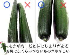 Japanese Food, Vegetable Garden, Cucumber, Food And Drink, Knowledge, Wisdom, Vegetables, Cooking, Health