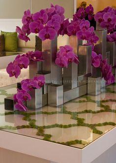 #orchids #fuschia #focal