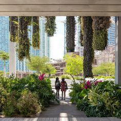 Perez Art Museum Miami - Photography by Seamus Payne - 10