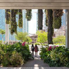 Perez Art Museum Miami - Photography by Seamus Payne - 10