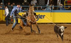 Tie Down Roping-awesome picture