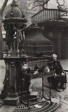 Rosalie Gwathmey Bird Market, Île de la Cité, Paris c.1950