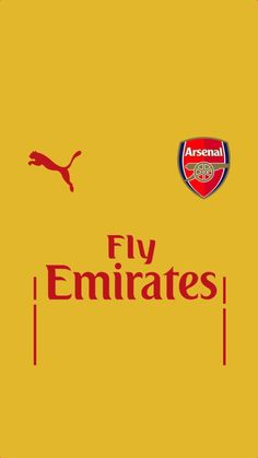 Arsenal Puma Fly Emirates