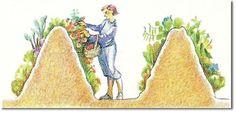 Sepp Holzer's edible earthbanks