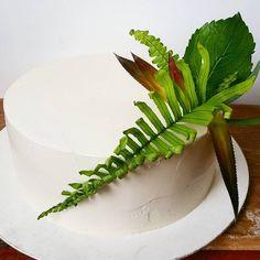 bolo vegano com folhagens naturais Natural, Plant Leaves, Plants, Cakes, Plant, Nature, Planets, Au Natural