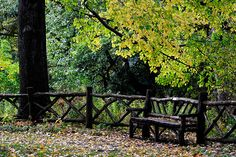 I love the rustic fence and bench!