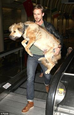 Now THAT's a hot pic of Ryan Gosling....I love a man who loves a big puppy.
