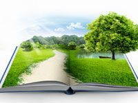 Find Open Book Green Grass Over Blue stock images in HD and millions of other royalty-free stock photos, illustrations and vectors in the Shutterstock collection. Thousands of new, high-quality pictures added every day.