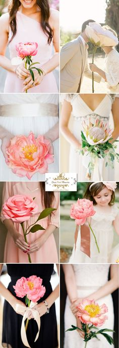 single pink blush peach rose peony bloom flowers wedding and bridesmaid bouquets