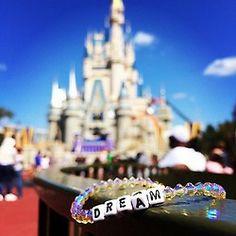 Dream in Disney World