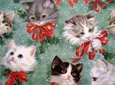 Christmas kittens...