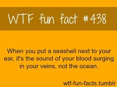 I knew that and every time I do it I feel better pretending it's the ocean.
